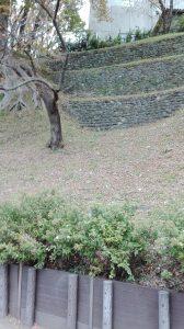 櫓横の石垣