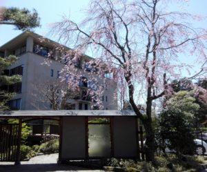 ホテルの庭園への入り口